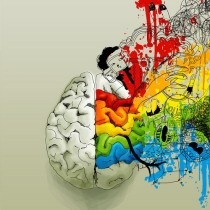 color-creative-ideas-design-illustration-brain-colorful-7c6fc3d21551e01f7804e2e675f2a63e-h